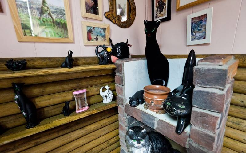 Музей Кошки (фото).