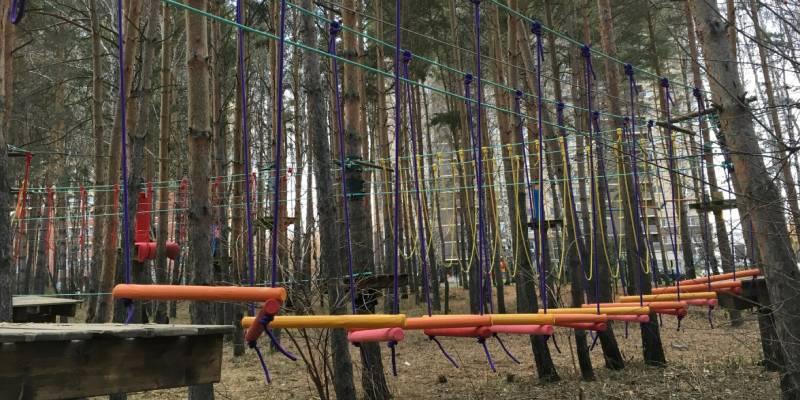 Лесной экстрим (фото).
